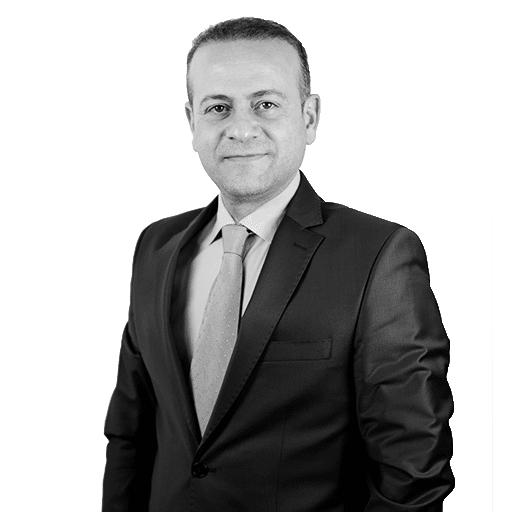 Prof. Dr. Mehmet Erdem